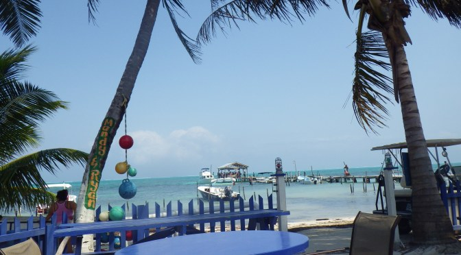 Hot Tamale? Shark Touching? Loose Egg? – Caye Caulker, Belize: Check!