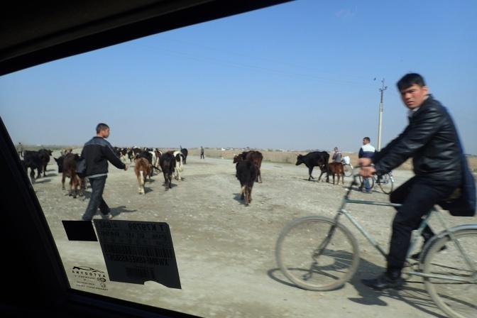 Termiz to Denau to Dushanbe to Khojand – Oh My! Your 2 Girls head from Uzbekistan to Tajikistan.